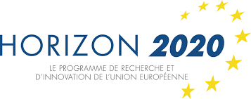 APPELS A PROJETS EUROPEENS (HORIZON 2020) Thin, Organic and Large Area Electronics