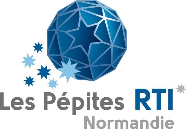 Pépite RTI Metal to Plastic (DEDIENNE MULTIPLASTURGY GROUP)