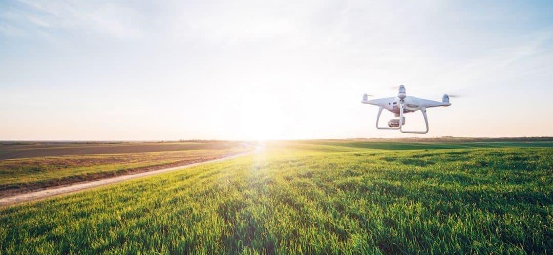 DRONES : L'INTELLIGENCE PRÉDICTIVE AU SERVICE DE LA TERRE