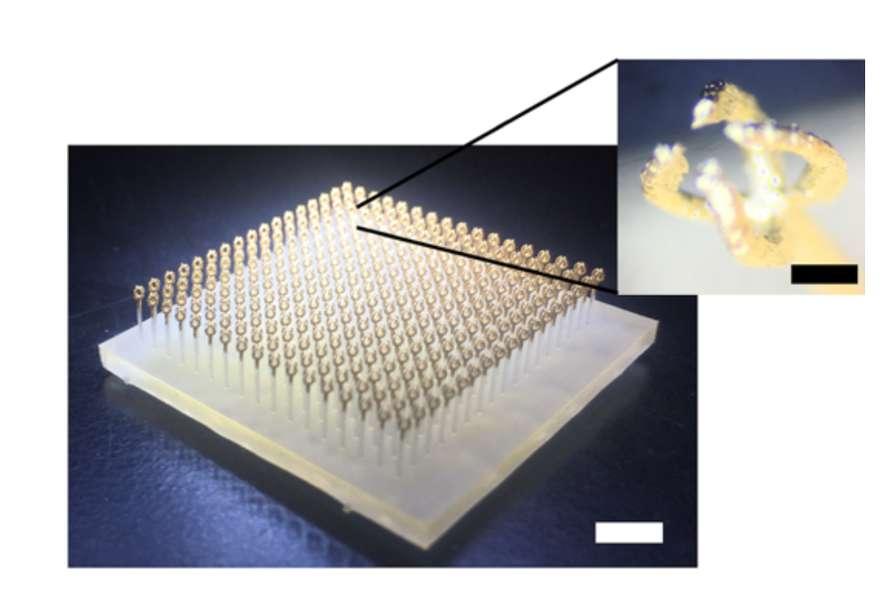 L'impression 3D décuple les possibilités des métamatériaux – Impression 3D