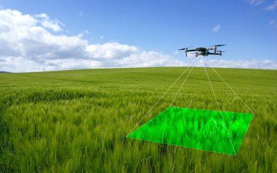 New drone technology revolutionises crop walking – FarmingUK News